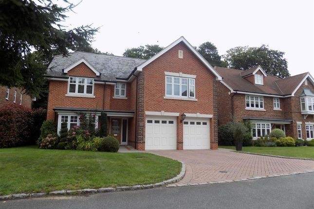 Thumbnail Detached house for sale in Chapel Pines, Camberley