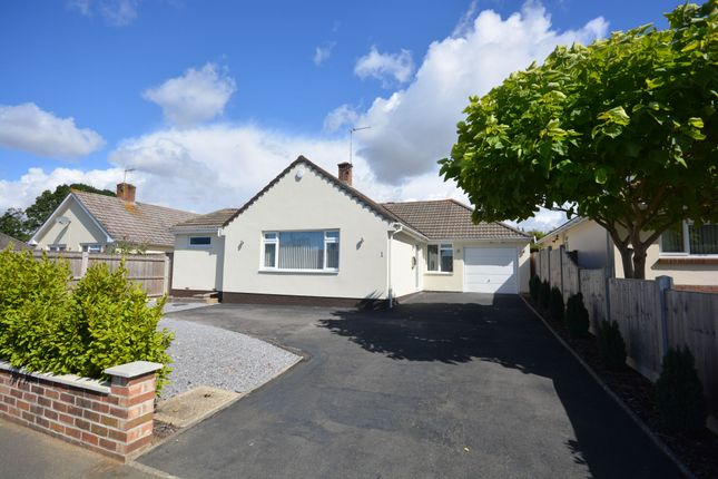 Thumbnail Detached bungalow for sale in Steepleton Road, Broadstone