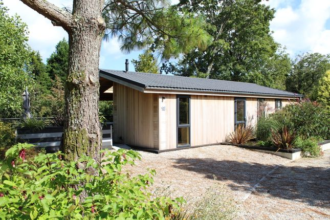 Thumbnail Detached bungalow for sale in Palstone Lane, South Brent