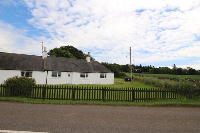 Thumbnail Bungalow to rent in Marykirk, Laurencekirk