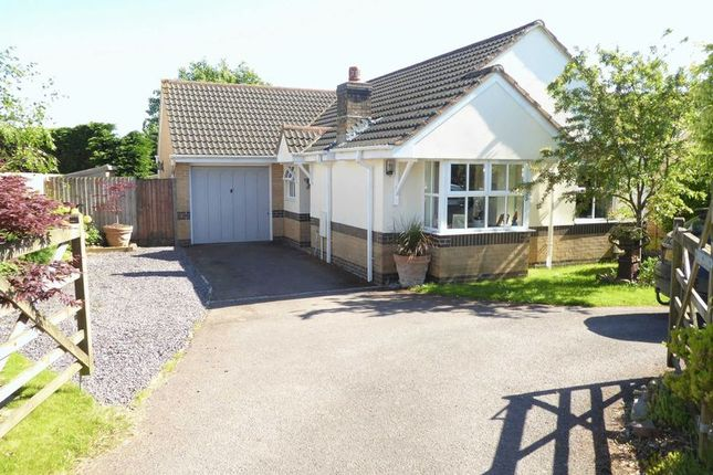 3 bed bungalow for sale in Kings Farm Lane, Winkleigh