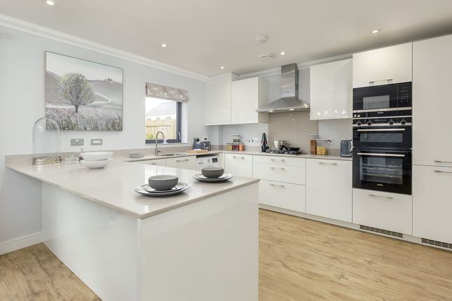 Thumbnail Semi-detached house for sale in Viscount Drive, Dalkeith