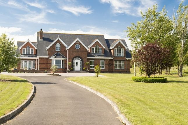 Thumbnail Detached house for sale in Redford House, Wexford Town, Wexford