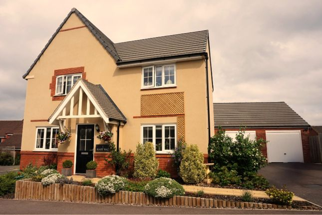 Thumbnail Detached house for sale in Hart Way, Rushden