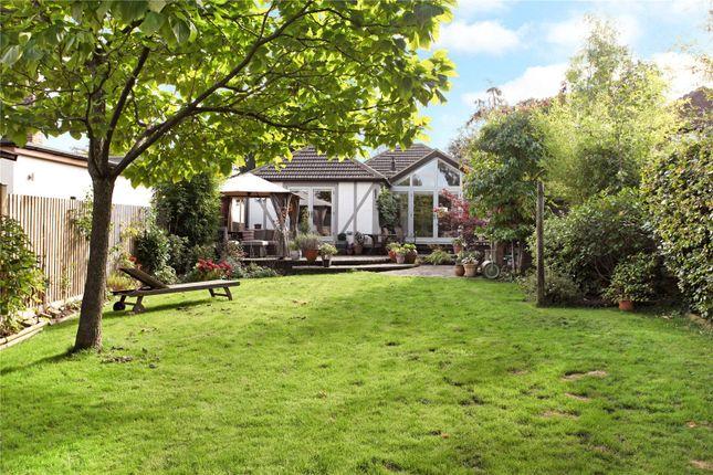 Thumbnail Detached bungalow for sale in Boundstone Road, Wrecclesham, Farnham, Surrey