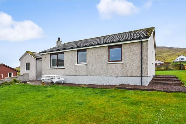 Thumbnail Detached house for sale in Wester Quarff, Shetland
