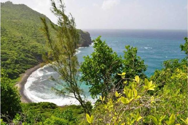Thumbnail Land for sale in Moule A Chique, Vieux Fort, Saint Lucia