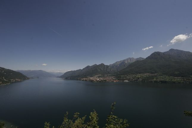 Panoramic Lakeview