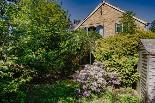 Thumbnail Detached house for sale in Studland Road, Surrey
