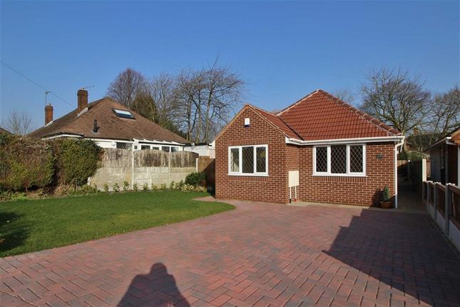 Thumbnail Detached bungalow to rent in Moor Avenue, Penwortham, Preston