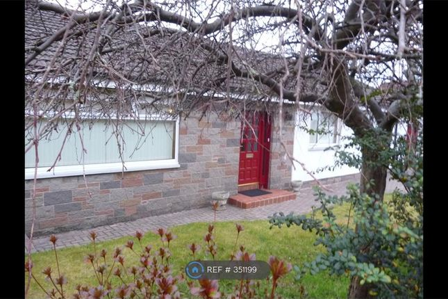 Thumbnail Bungalow to rent in Claremont Area, Alloa