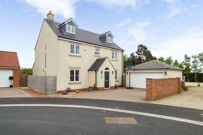 Thumbnail Detached house for sale in Honey Pot Close, Whitton Village, Stockton-On-Tees, Durham