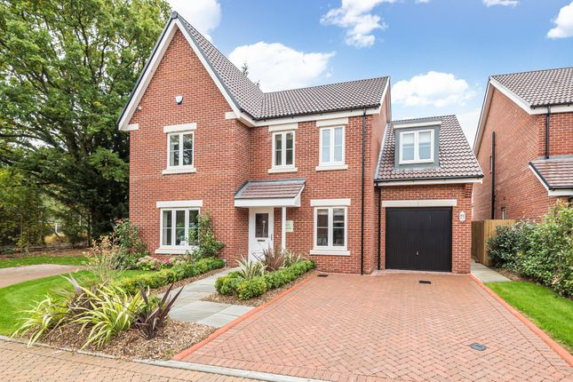 Front of Russells Close, Whitehill, Hampshire GU35