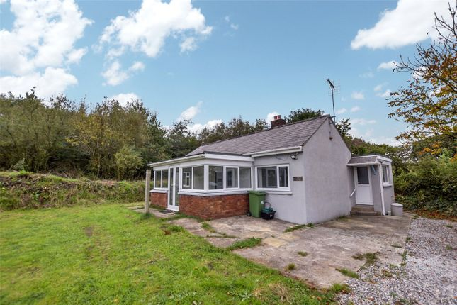 Thumbnail Bungalow to rent in Bridgerule, Holsworthy