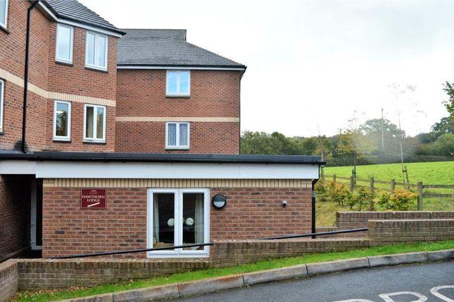 Thumbnail Flat to rent in Hawthorn Lodge, Hatherleigh Care Village, Hawthorn Park, Okehampton