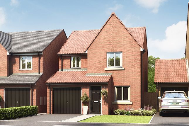 """Thumbnail Property for sale in """"The Redwood"""" at Hazel Road, Blaydon-On-Tyne"""