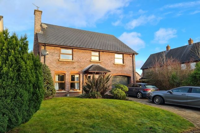 Thumbnail Detached house for sale in Walmer Grove, Bangor