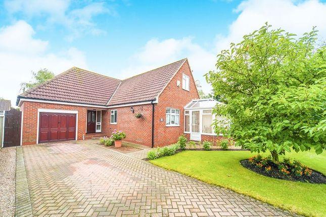 Thumbnail Detached house for sale in Dalton Lane, Halsham, Hull