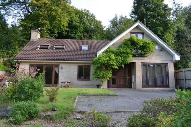 Thumbnail Detached bungalow for sale in Tape Lane, Gurney Slade