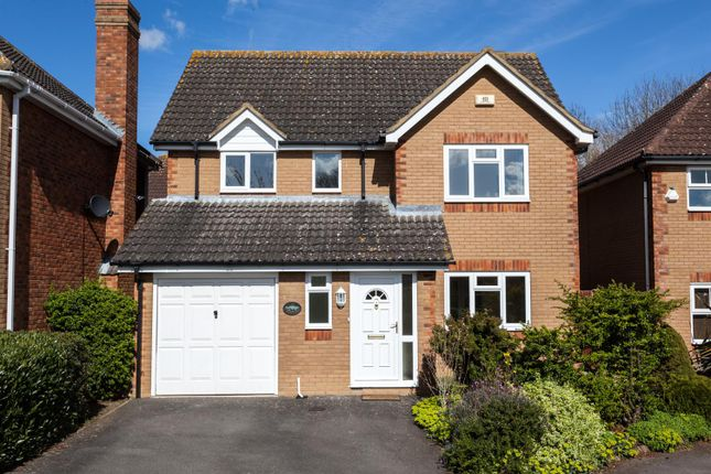 Thumbnail Detached house for sale in Snowdonia Way, Huntingdon