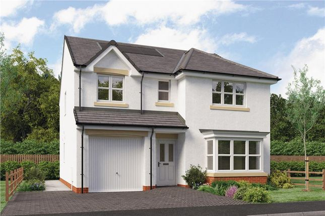 """Thumbnail Detached house for sale in """"Fletcher"""" at Brora Crescent, Hamilton"""