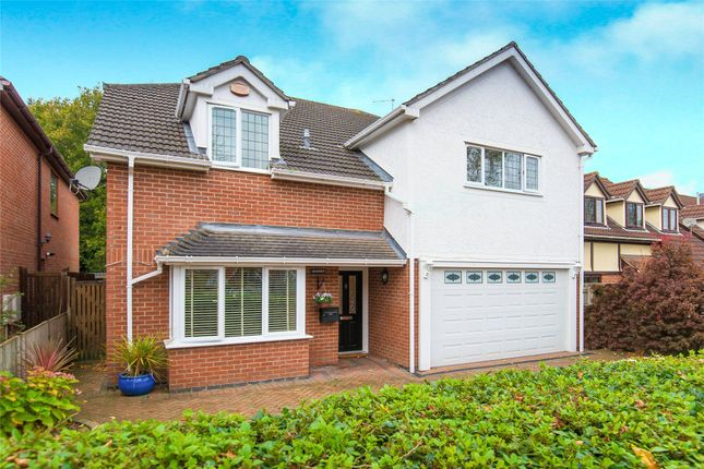 Thumbnail Detached house for sale in Shelley Road, Hutton, Essex