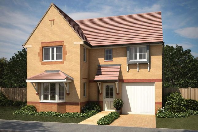 "Thumbnail Detached house for sale in ""Halstead"" at Squinter Pip Way, Bowbrook, Shrewsbury"