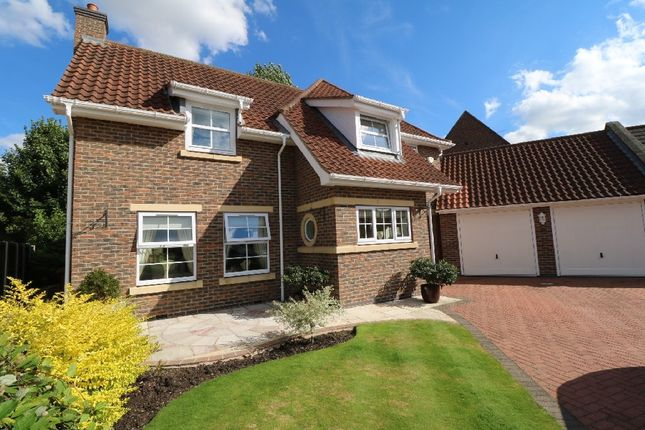 Thumbnail Detached house for sale in Pashley Walk, Belton, Doncaster