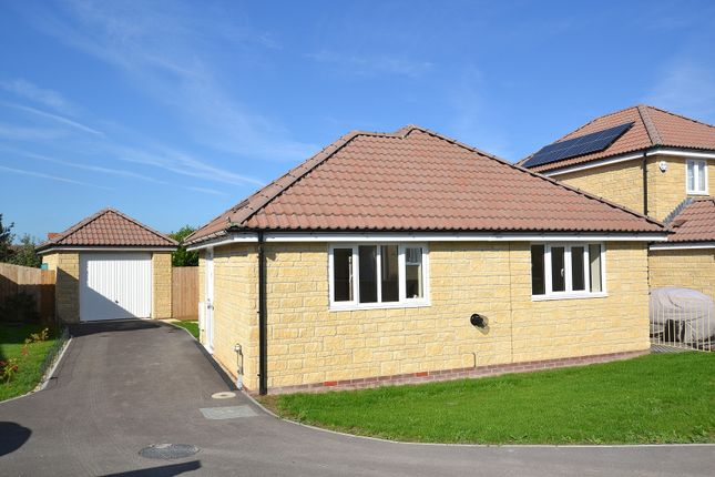 Thumbnail Detached bungalow to rent in Collingham Close, Templecombe