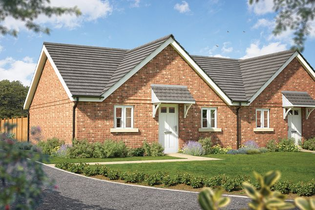 "Thumbnail Semi-detached house for sale in ""The Elm "" at Haygate Road, Wellington, Telford"