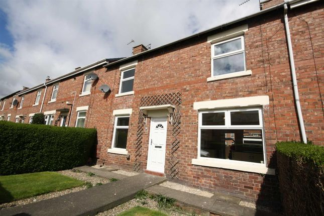 Thumbnail Terraced house to rent in Fife Avenue, Chester Le Street