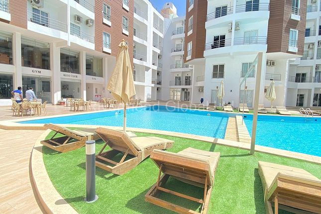 Apartment for sale in Aqua Palms Resort, Al Ahyaa, Hurghada, Red Sea