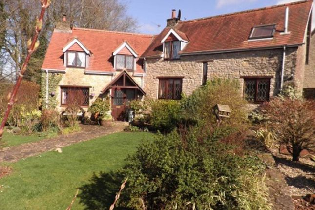 Thumbnail Property to rent in Rodden, Frome, Somerset