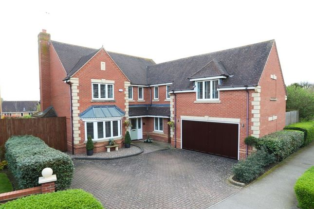 Thumbnail Detached house for sale in Martlet Close, Wootton, Northampton