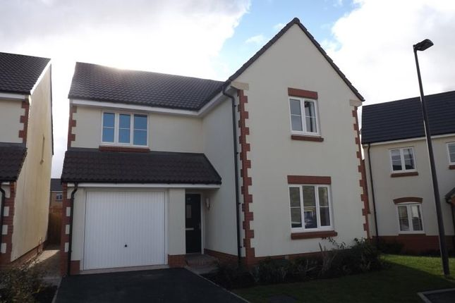 Thumbnail Detached house to rent in Sorrel Place, Stoke Gifford, Bristol