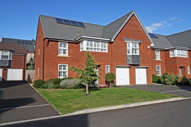 Thumbnail Detached house for sale in Veysey Close, Exeter