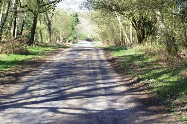 Photo 11 of Chelwood Vachery, Millbrook Hill, Uckfield TN22