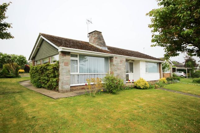 Thumbnail Detached bungalow for sale in Habgood Close, Acle, Norwich