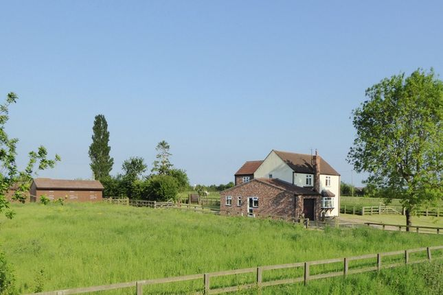 Thumbnail Equestrian property for sale in Trader Bank, Sibsey - PE22, Boston - Lincolnshire,