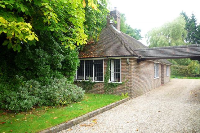 Thumbnail Bungalow to rent in Coombe Hill Road, East Grinstead