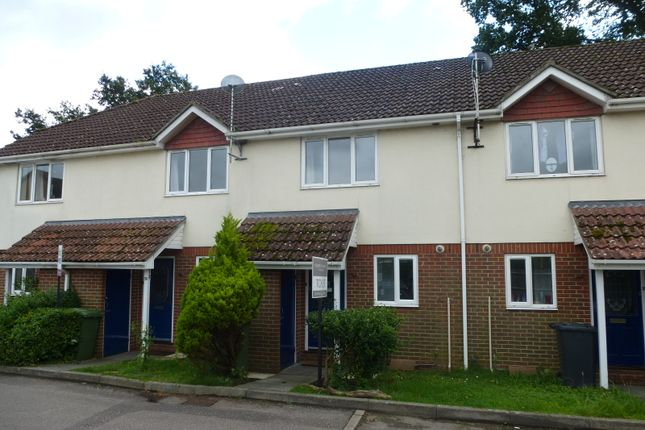 Thumbnail Terraced house to rent in Kings Road, Petersfield