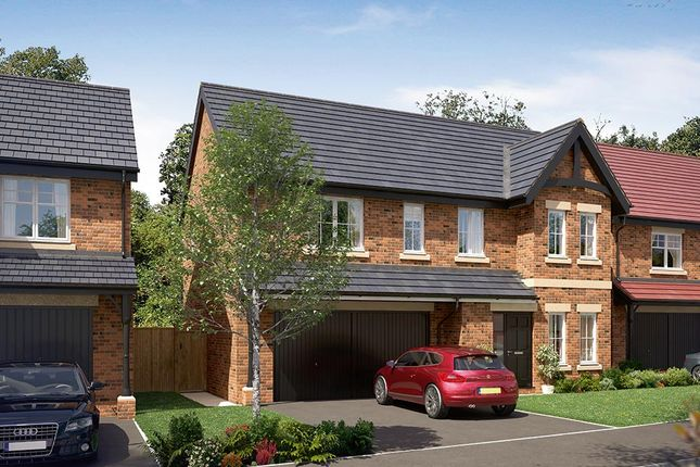 "Thumbnail Detached house for sale in ""The Westbury"" at Wingfield Road, Alfreton"