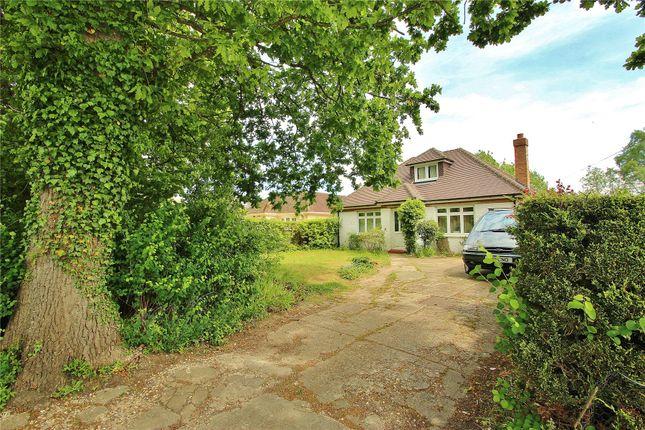 Thumbnail Detached bungalow for sale in Chobham, Woking, Surrey