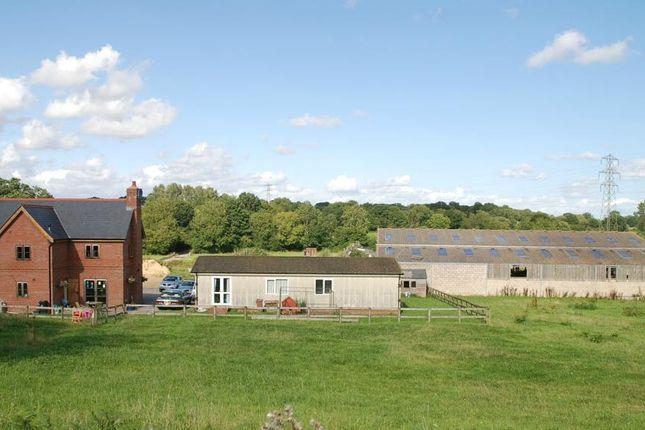 Thumbnail Detached house for sale in Crendell, Fordingbridge, Dorset