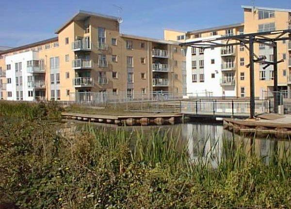 Thumbnail Flat to rent in Lockside Marina, Chelmsford