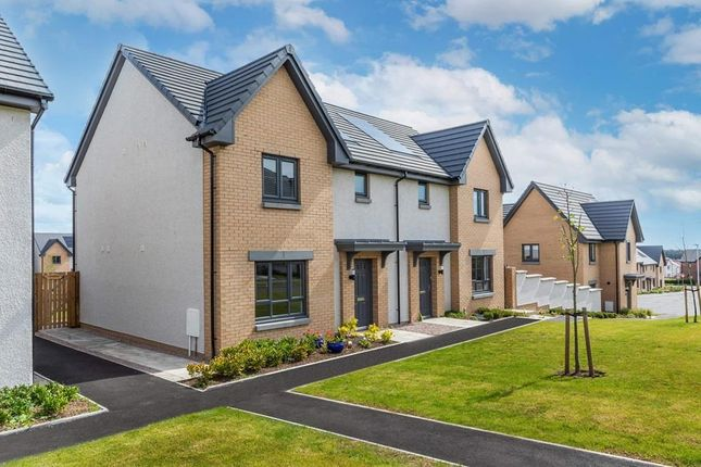 """Thumbnail Semi-detached house for sale in """"Craigend"""" at Countesswells Park Road, Countesswells, Aberdeen"""