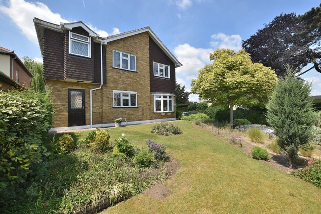 Thumbnail Detached house for sale in Broomfield Road, Chelmsford