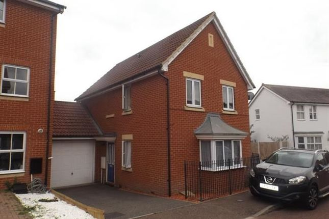 Thumbnail Detached house to rent in Septimus Drive, Highwoods, Colchester