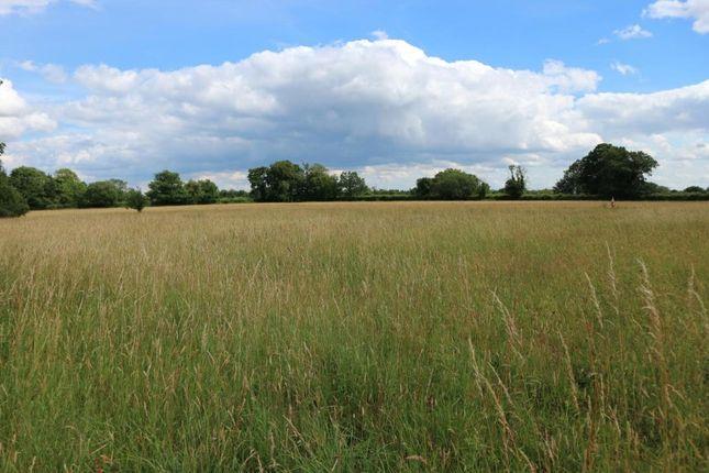 Thumbnail Land for sale in Agricultural Land, Adjacent Reymerston Hall, Reymerston, Norfolk