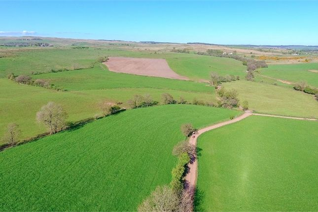 Stoneybrook Farm, Lees Hill, Brampton, Cumbria CA8